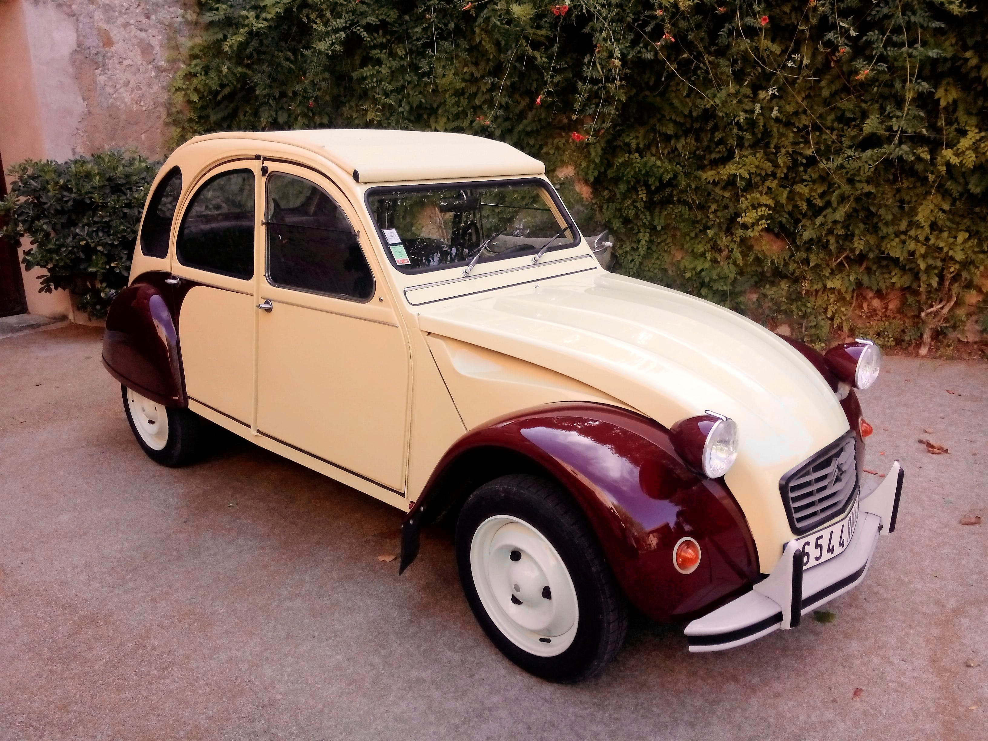 location citroen 2cv 1977  u00e0 saint rapha u00ebl  190 boulevard